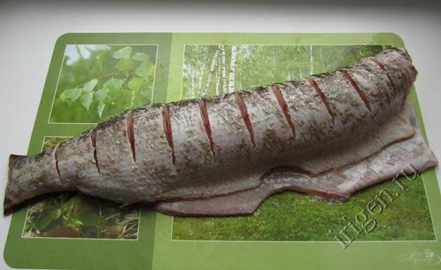 фаршированная рыба 3