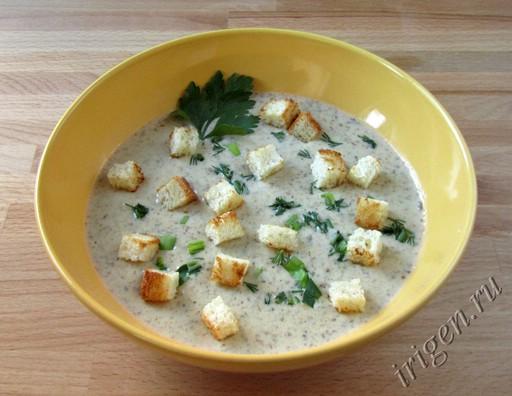 суп-пюре с грибами и сыром фото