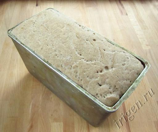 хлеб перед выпечкой фото
