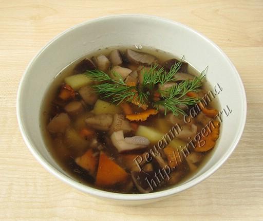 Рецепт супа из лесных грибов фото