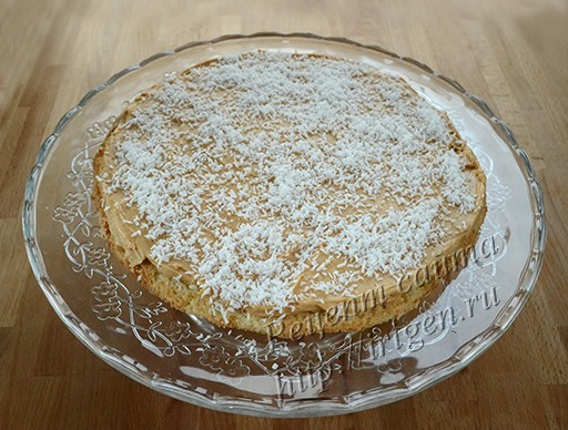 сборка торта - светлый корж