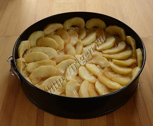 сборка торта - яблочная начинка