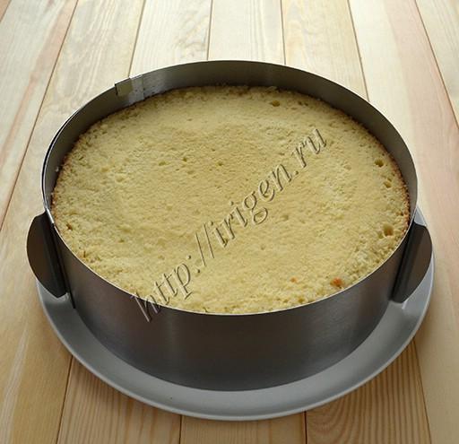 торт в кольце