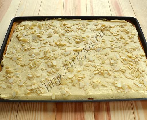 корж для пирога перед выпечкой