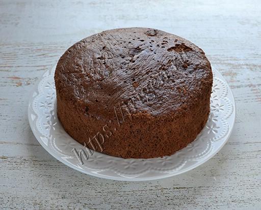 бисквит шоколадный на растительном масле